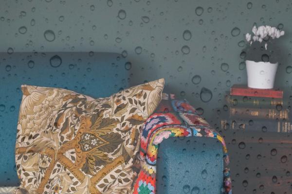 家の中で雨が降る夢