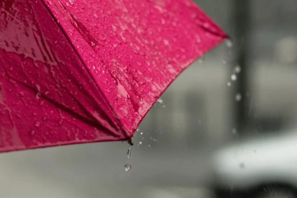 雨で傘をさしている夢