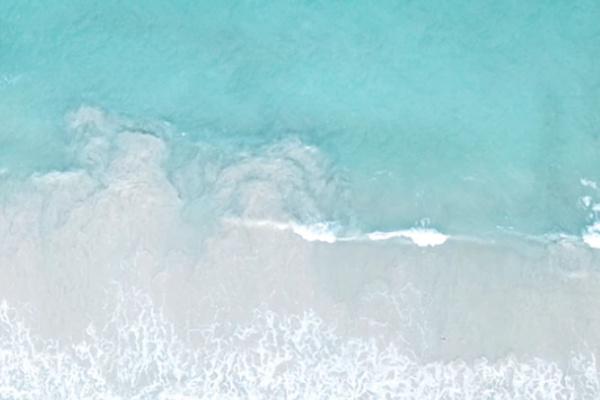 引き潮の海の夢