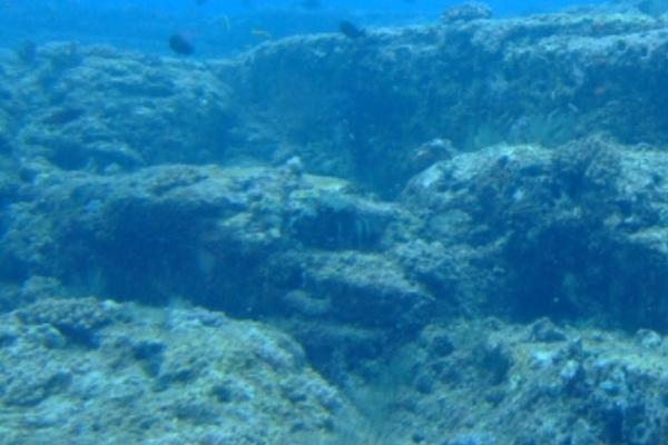 海底に沈む夢
