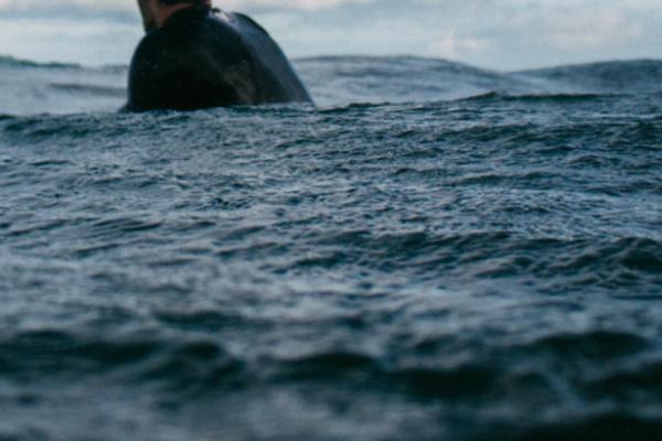 海を泳いで渡る夢