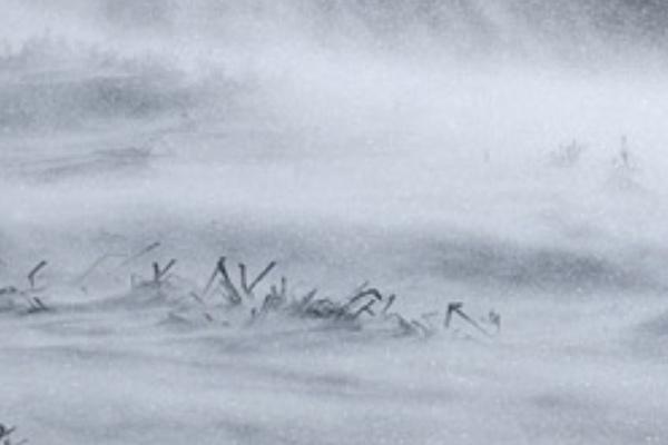 吹雪の中を歩いている夢