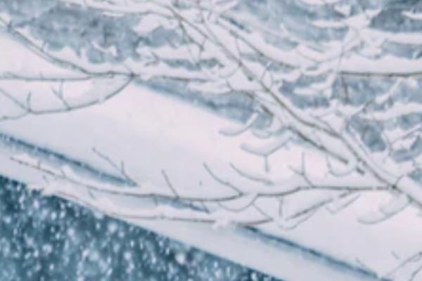 降り積もる雪の夢