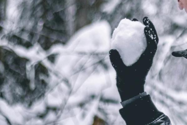 雪合戦で遊ぶ夢