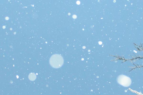 晴れた空に雪が降る夢