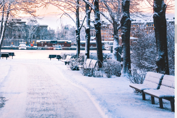 初雪が降る夢