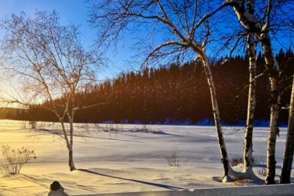 雪景色を見る夢