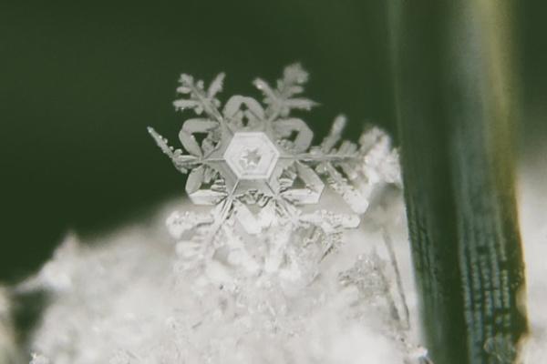 雪の結晶が印象に残る夢