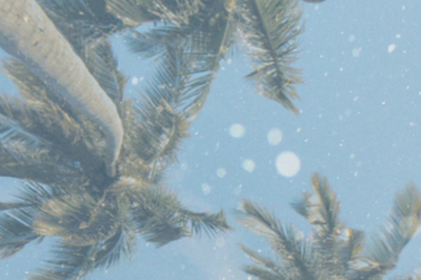 真夏など季節外れに降る雪の夢