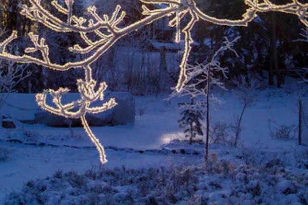雪の中迷子になる夢