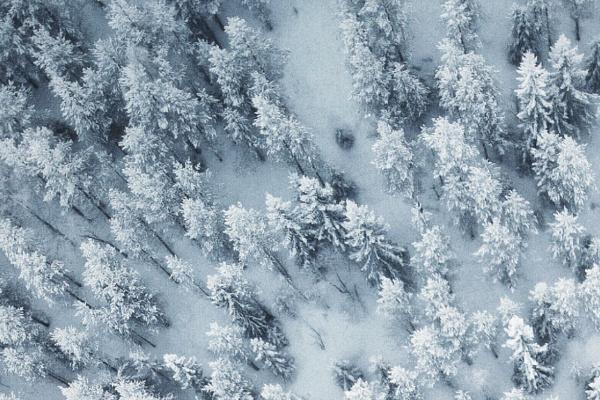 雪山で遭難してしまう夢