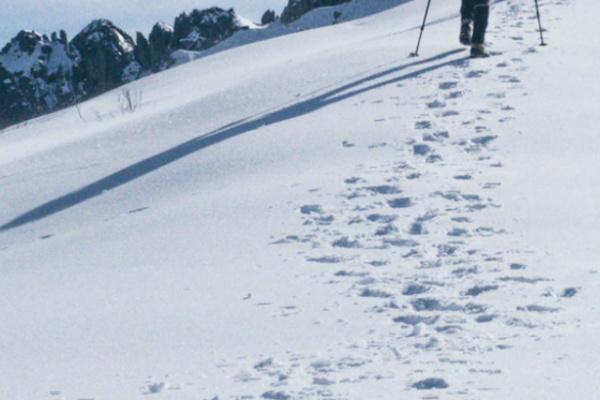 雪山に登る夢