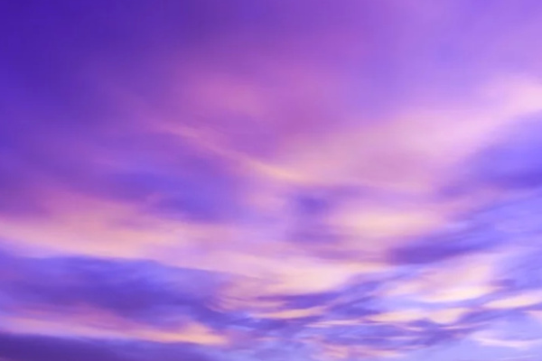 紫の空の夢