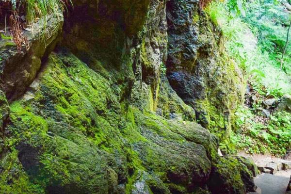 素鵞社の裏山の岩