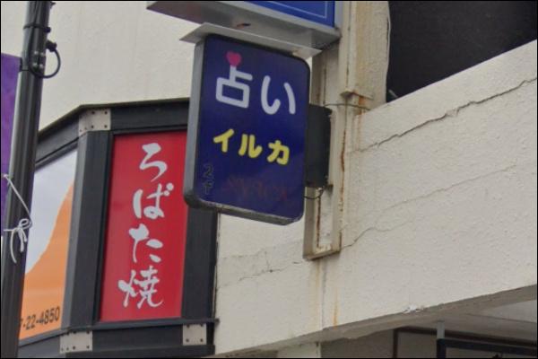 占いイルカ(スナックイルカ)