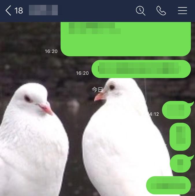 LINEのトークルーム背景を2羽の白いハトに設定