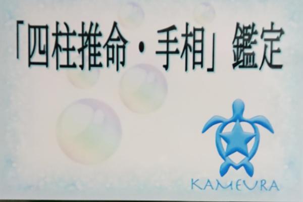 福岡の四柱推命と手相鑑定「亀占(かめうら)」