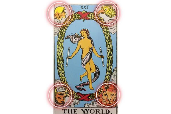 世界の四大聖獣(テトラモルフ)