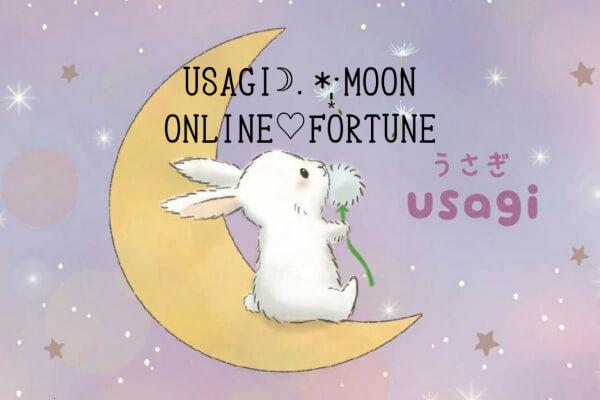 「うさぎと月」うさぎ先生