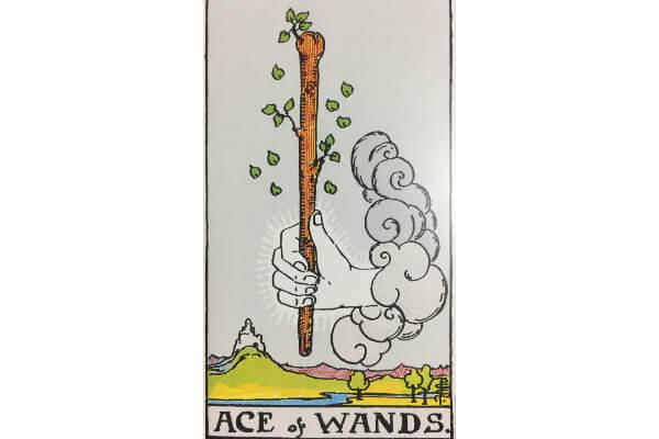 タロットカード「ワンドのエース」の絵柄から読み取れる意味